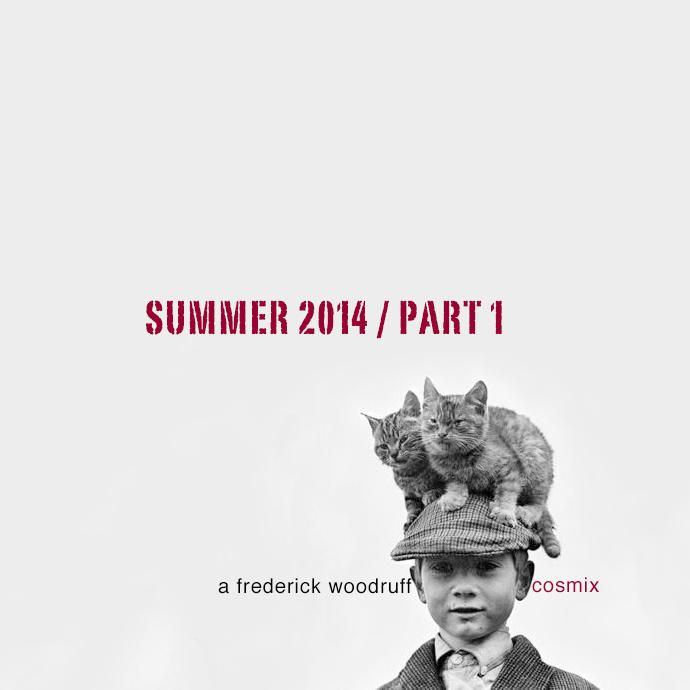new_cosmix_summer_2014