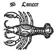 04cancer